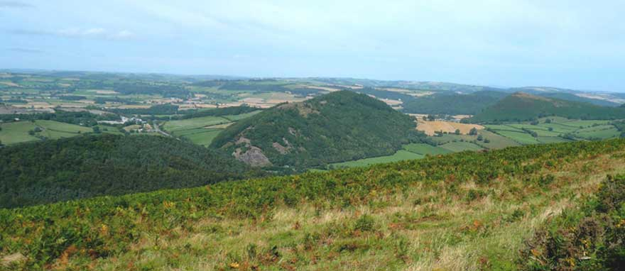 Old Radnor Hills