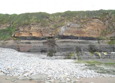 Namurian-Westphalian sediments